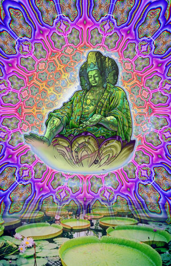 Buddhism-and-Psychedelics