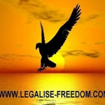 Legalize Freedom podcast